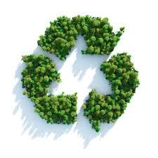 Collecte saisonnière des déchets verts
